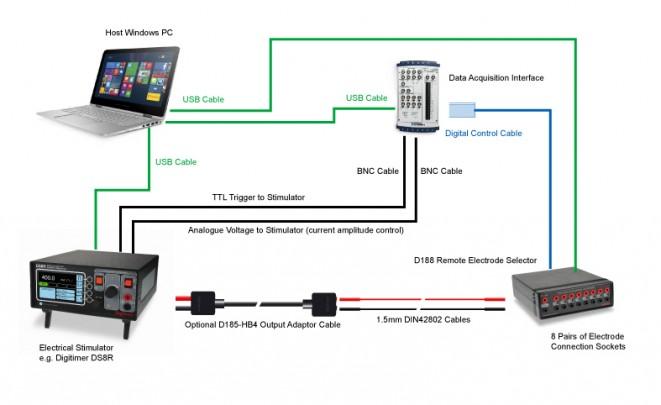 14487 System Digitimer