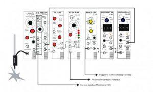 Intracellular Recording Digitimer