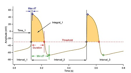 AP Analysis HEKA Fitmaster Software